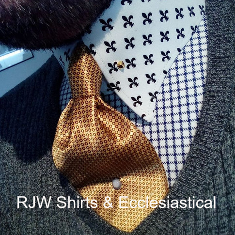Washable Stiff Winged Collar-Pin Collar