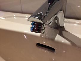 Garnelenaquarium - Wasserwechsel