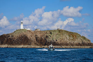 Raptor Sea Safari Round Island.jpeg