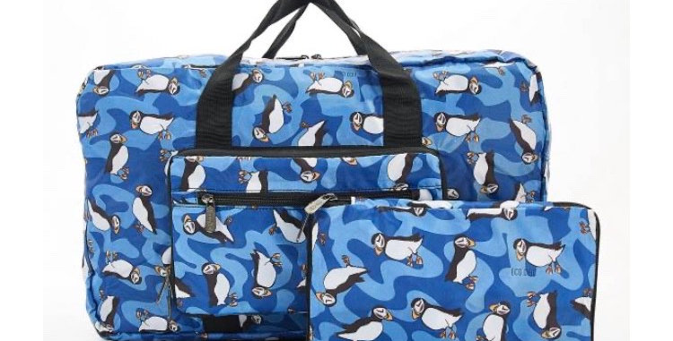 EcoChic Lightweight Foldable Holdall - Puffin