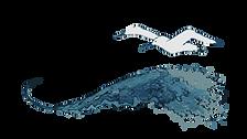 Wild Writer Main Logo-01.png