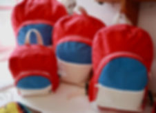 Red Canvas Bags.jpg