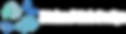 5 Island Web Design STAMP Long Version W