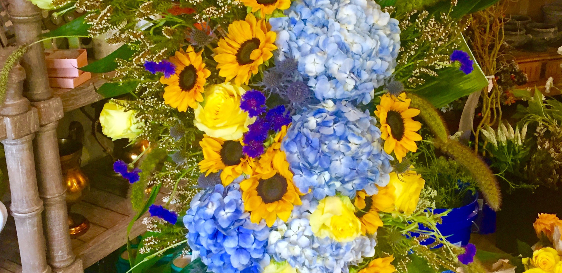 Standing Yellow and Blue Spray