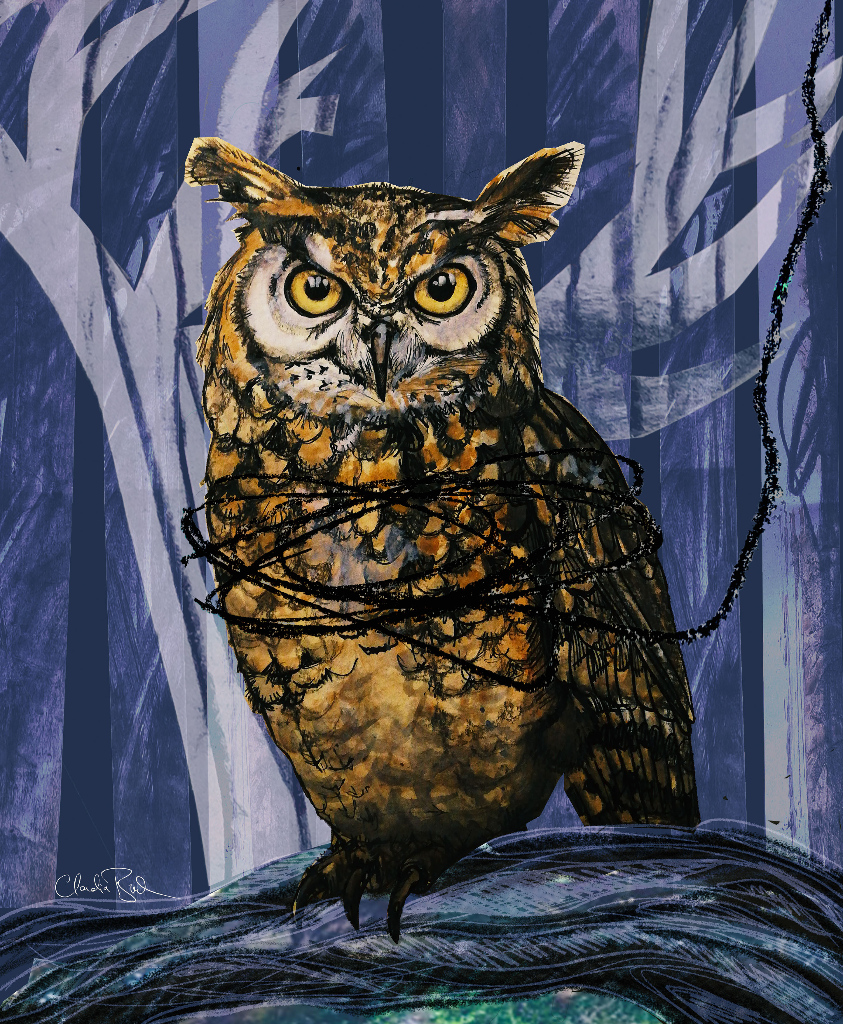 CBucek_OWL-small