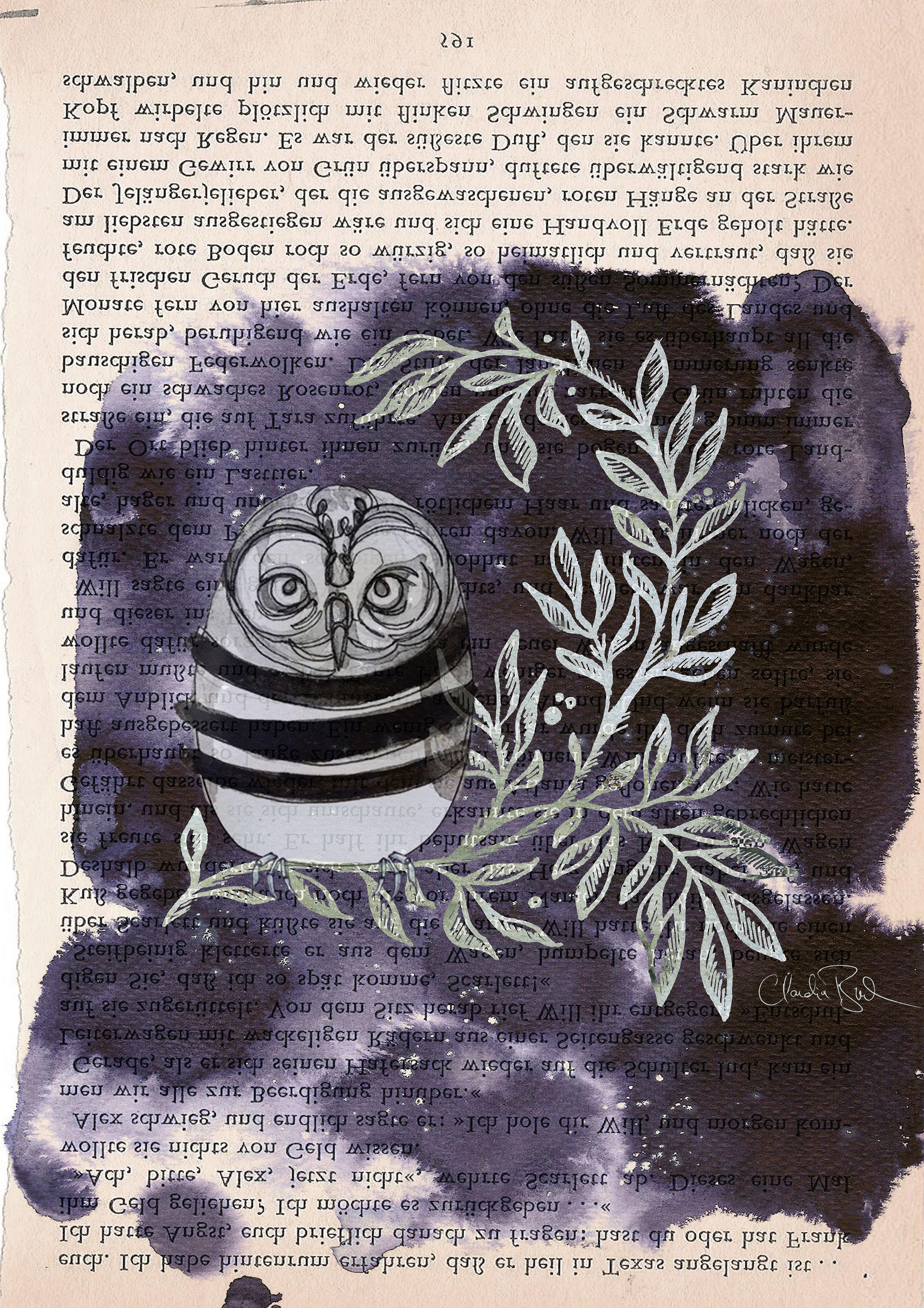 CBucek_Book-Owl-small