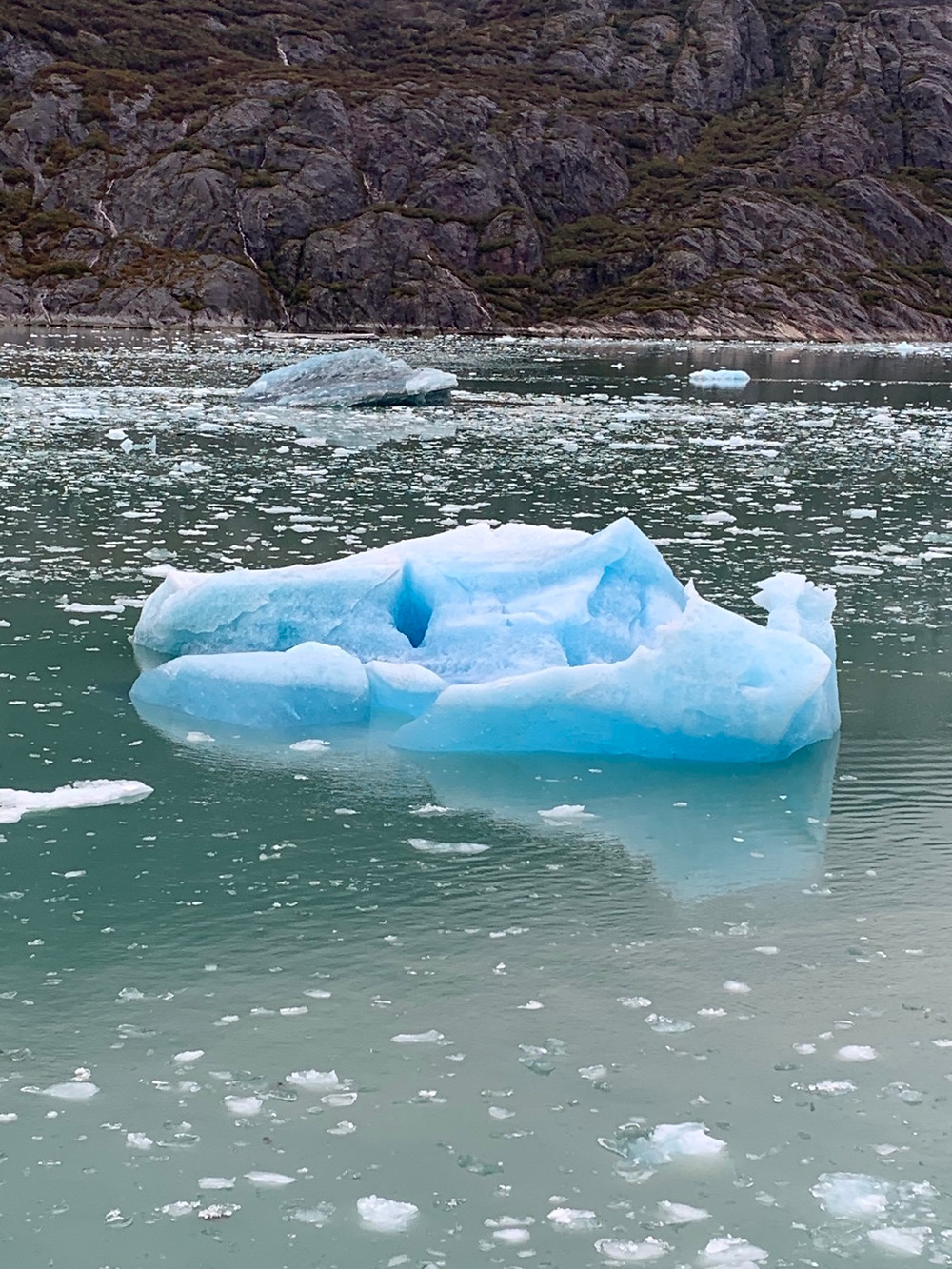 Iceburg floating Alaska 2019