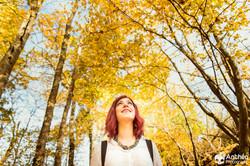 photographe forêt automne