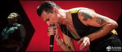 Depeche Mode Lyon 2014 Halle Tony
