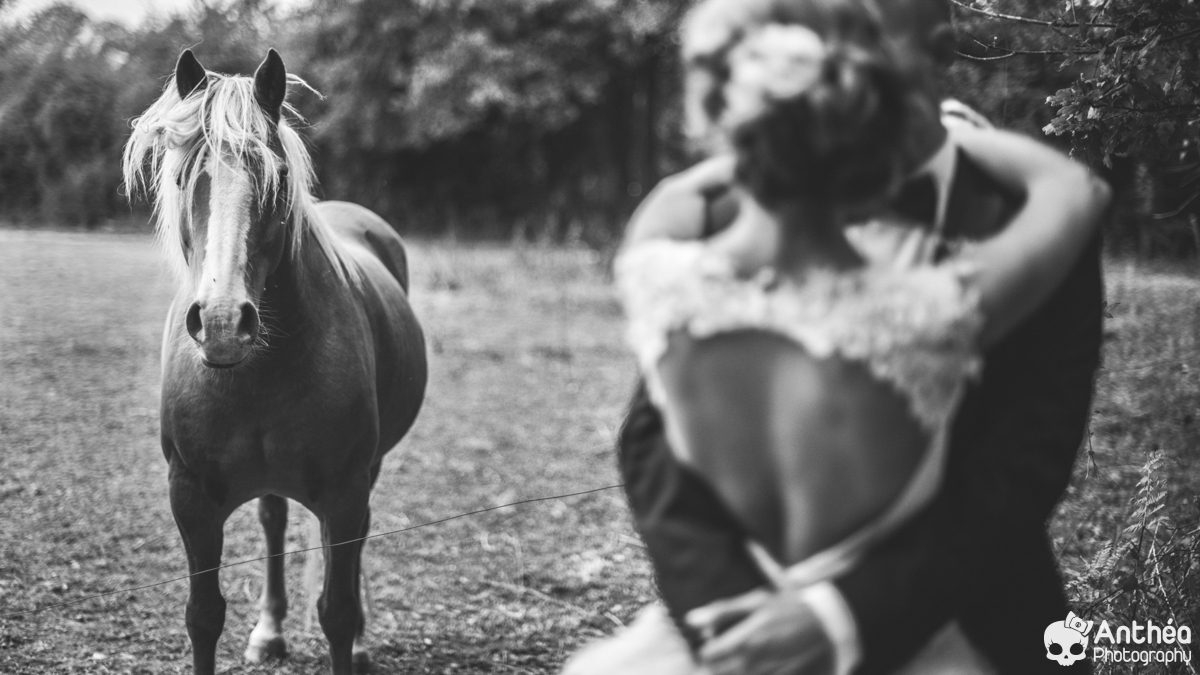 mariage en vendée photographe