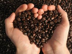 COFFEE IN COSMETICS