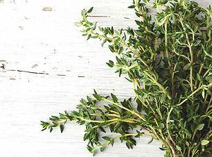 Thyme photo 2.jpg