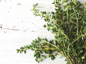 Thyme - better than an antibiotic! Recipes for home remedies