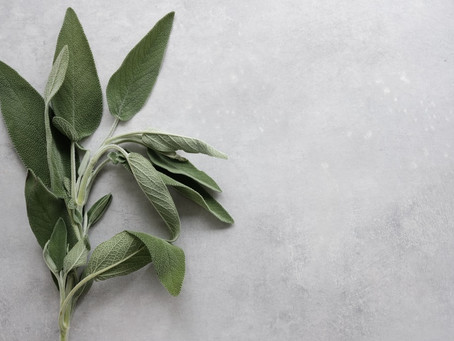 Sage - The excellent cosmetic. Beauty homemade recipes!