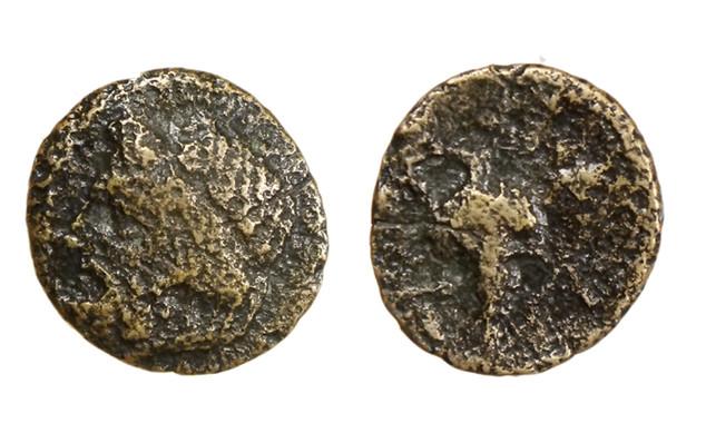 Aeolis, Temnus