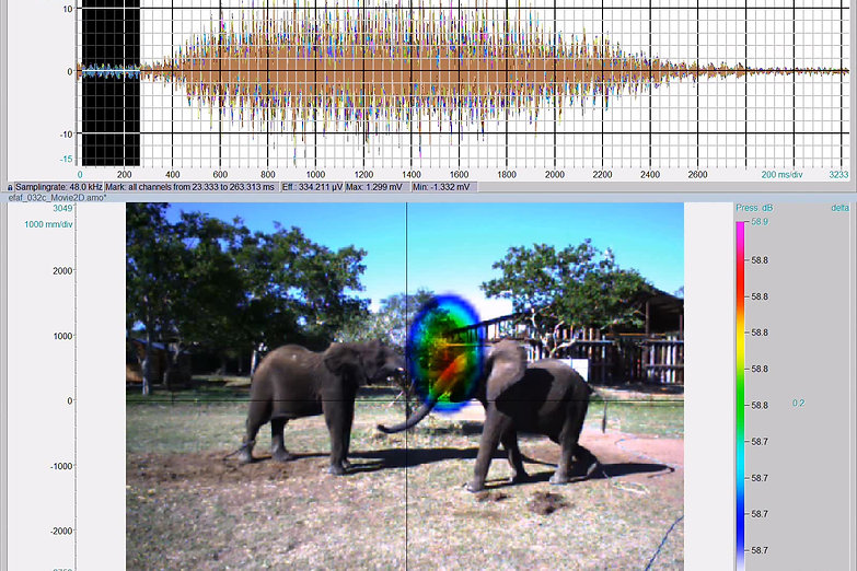 Elephant Communication