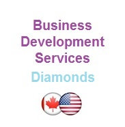 Business Development Service - Day Rate