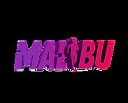 Run Malibu Half Marathon 5K