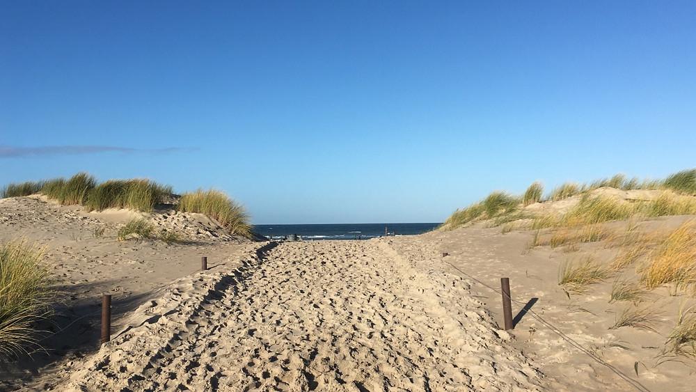 Weg zur Ostsee