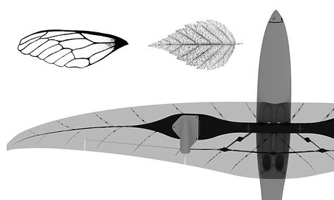 3d printed wing biomicry