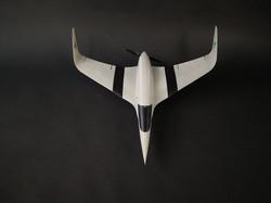 3D printed wing