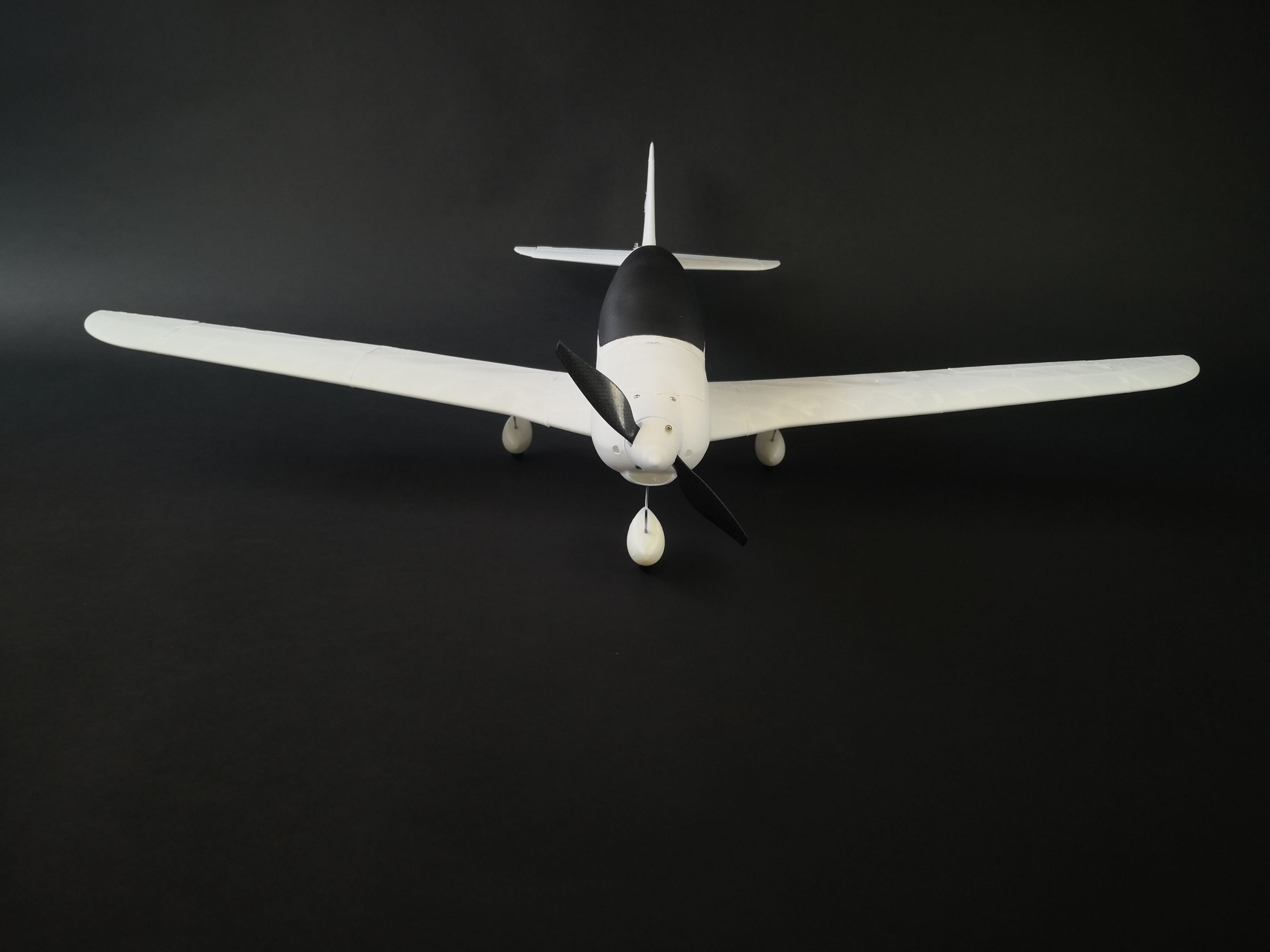 Printable RC light sport model