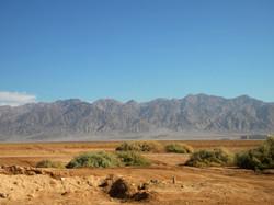 Neguev Desert