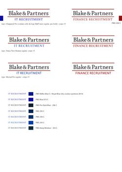Blake & Partners logo IT & Finance-2