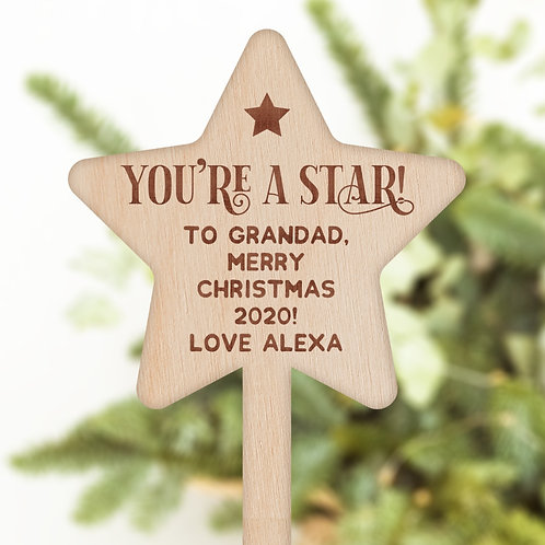 Star Shaped Wooden Plant Pot / Flower Pick - You're a Star