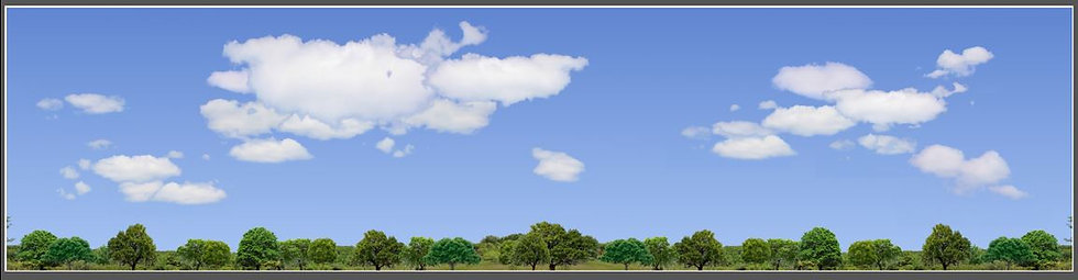 #570 Trees and sky N Scale
