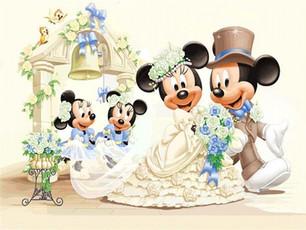 Binnenkort fotograaf bij Mickey Mouse?