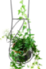 suspended hanging plant support: Wall plant holder, plant stand, plant hanger, interior, design, outdoot, pots, green-living, plant box