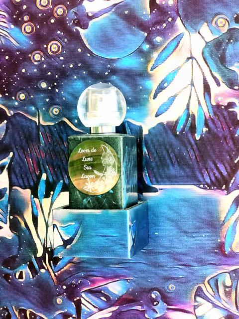 Lever de Lune sur lagon