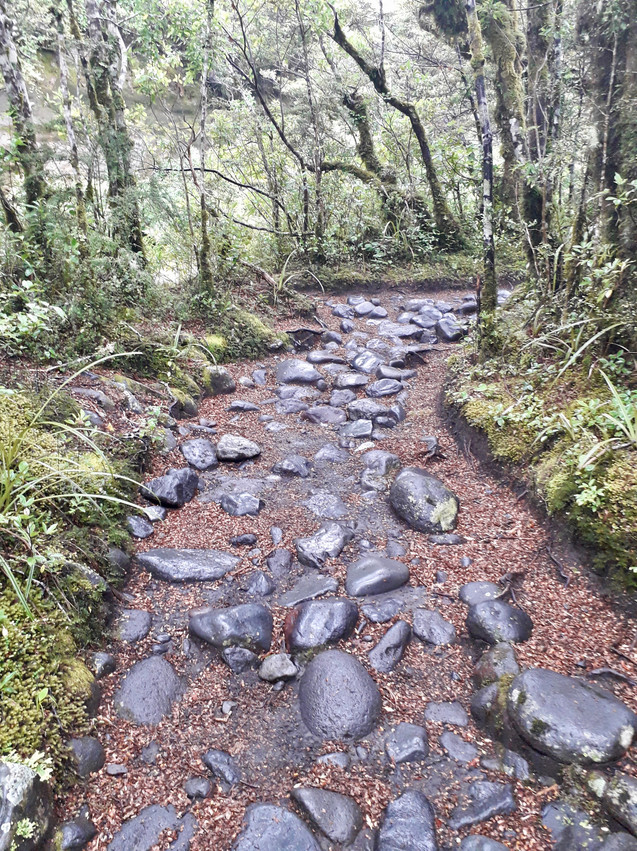 Tongariro National Park track, ©Taina CALISSI