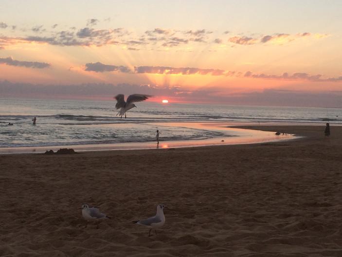 Simply sunset