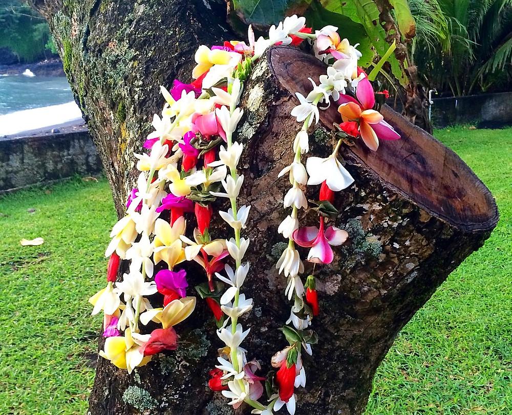 Couronnes de Tiare Tahiti, frangipaniers, bougainvillea...