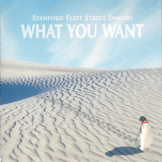 What You Want (1994)
