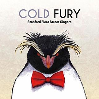 Cold Fury (2017)