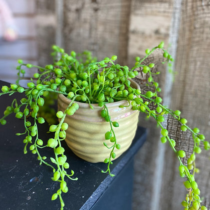 Artificial String of Pearls Succulent