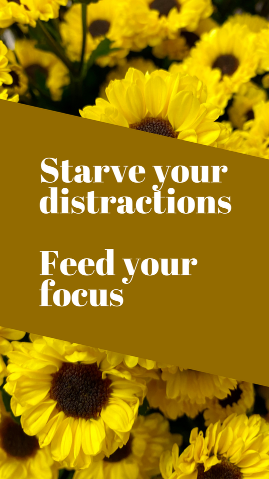 Starve your distractions  viking