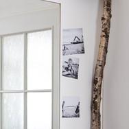 Využití březové větve jako dekorace Zuzana Stiborková