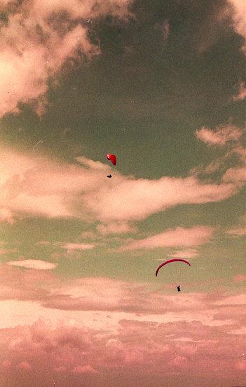 """Gliders"" Postcard Bundle"