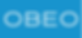 White Logo Rectangle Blue Background.png