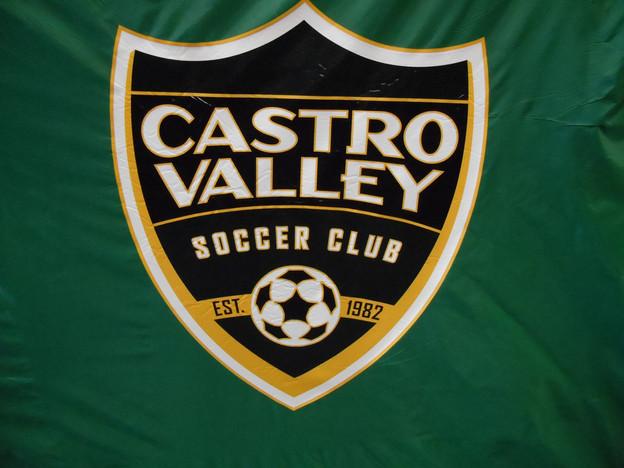 Castro Valley Back.JPG