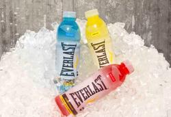 Everlast sports drink wholesale