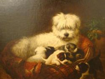 Maltese dog with puppies - Henriette Ronner