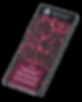 Xocolate Jolonch - Extrafine Dark Chocolate with Raspberry
