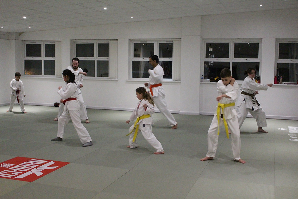 Adult and children karate class Leeds