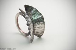 Fold Formed Ring.
