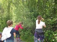 Kräuterwanderung mit Kindern